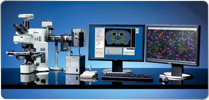 Stereo Investigator Confocal SD システムと Olympus BX51-DSU 顕微鏡